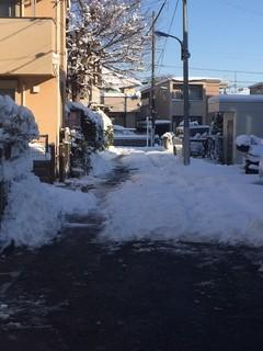 201801雪写真2.jpg