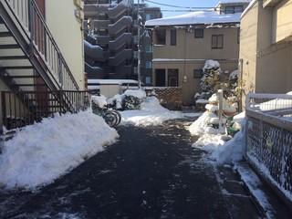 201801雪写真3.jpg